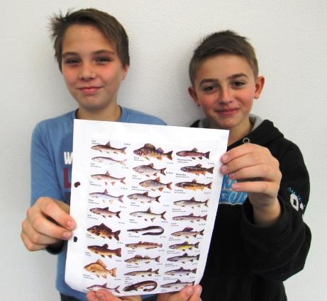 JuFo 6 Fische
