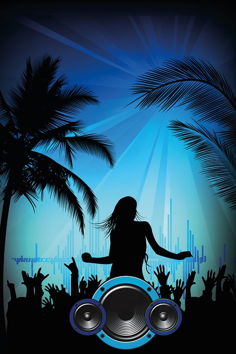 beach-party-250513_960_720
